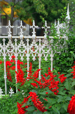 Kennebunkport Maine We Heart It Fence Maine And Flowers